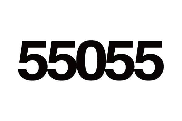 55055